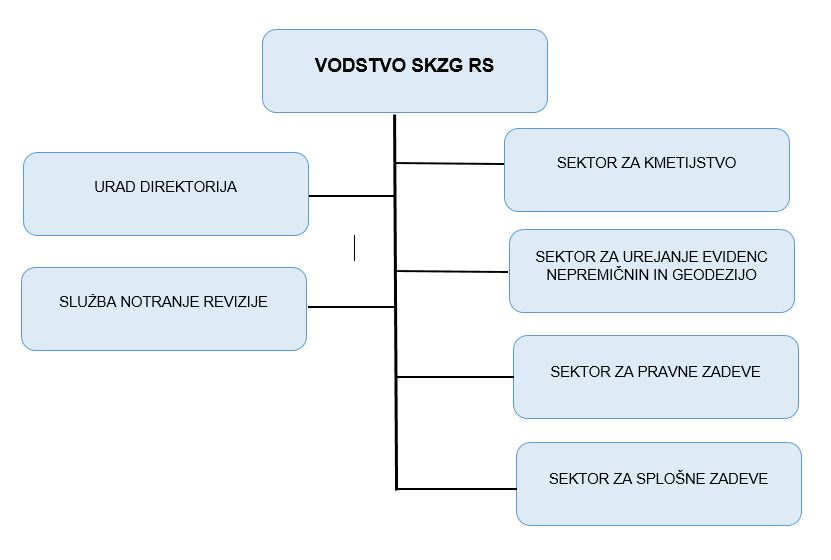 Graf organizacije